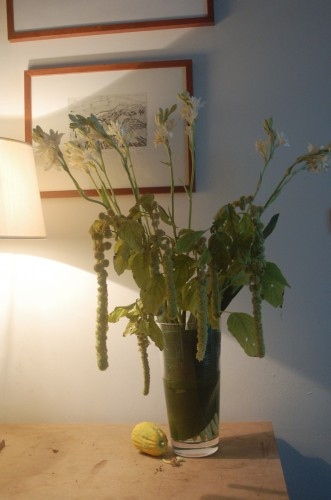 bouquet tubereuse.JPG