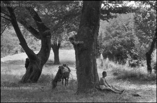 H_Cartier_Bresson.jpg
